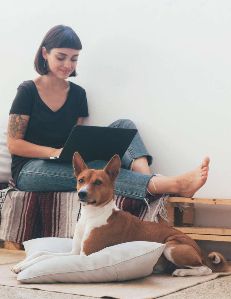 hundeernährungsberaterin von anifit sitzt gemeinsam mit ihrem hund im wohnzimmer und schaut ein webinar auf ihrem laptop