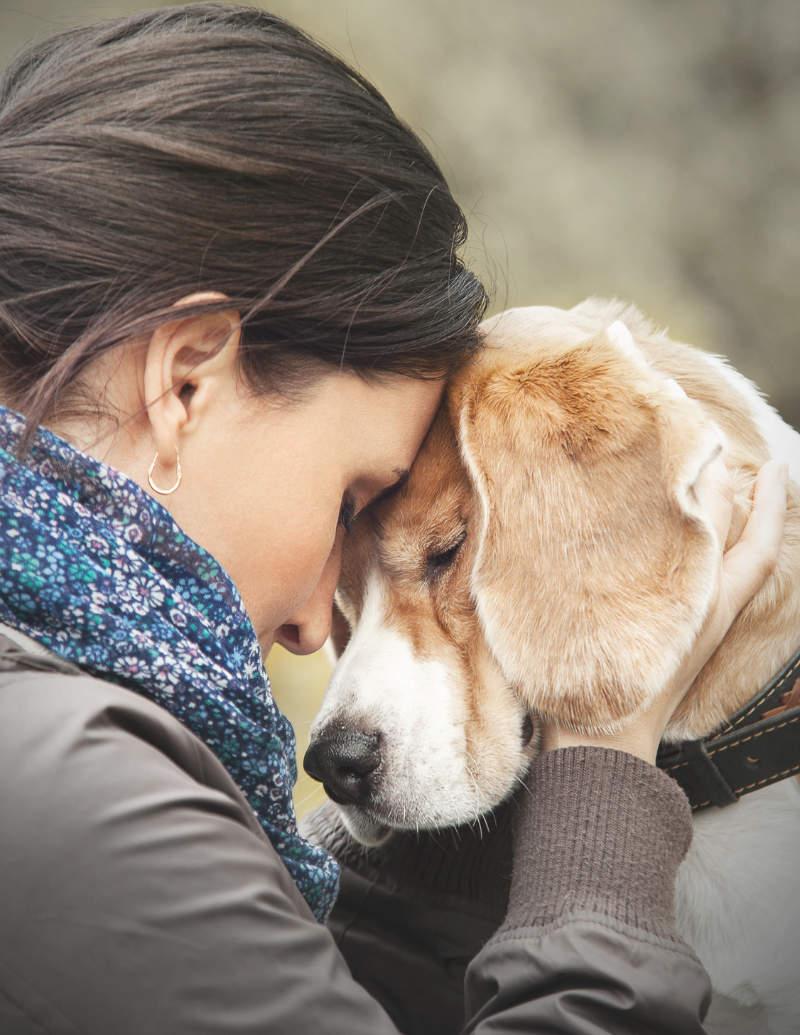 junge frau in liebevoller umarmung mit ihrem alten hund